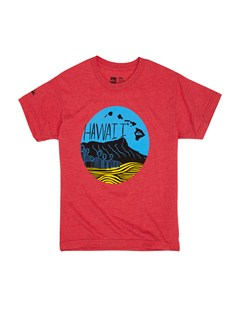 RQVHBoys 8- 6 For The Bird T-Shirt by Quiksilver - FRT1