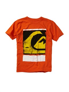 NNK0Boys 2-7 Monkey Jazz T-Shirt by Quiksilver - FRT1