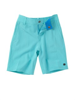 BLY0Boys 2-7 Talkabout Volley Shorts by Quiksilver - FRT1