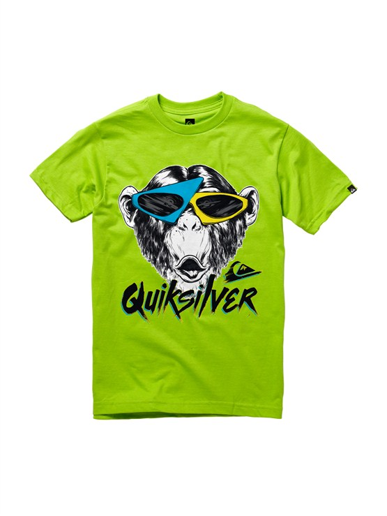 GJZ0Boys 2-7 Crash Course T-Shirt by Quiksilver - FRT1