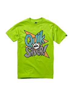 GJZ0Boys 8- 6 True Test T-Shirt by Quiksilver - FRT1