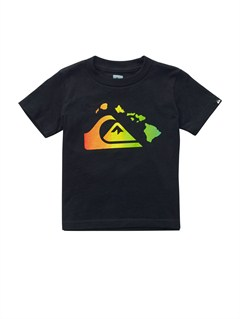 KVJ0Boys 8- 6 Gravy All Over T-Shirt by Quiksilver - FRT1