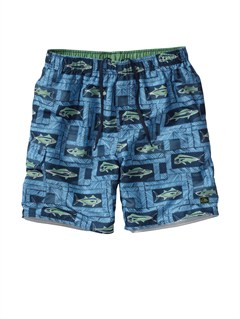 "BSN0Frenzied  9"" Boardshorts by Quiksilver - FRT1"