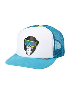 BNY0Boys 2-7 Mountain and the Wave Hat by Quiksilver - FRT1