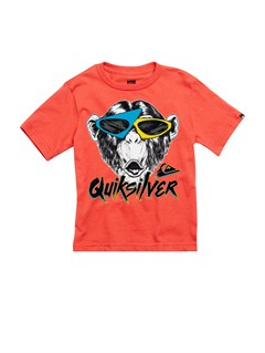 RQQ0Boys 2-7 After Dark T-Shirt by Quiksilver - FRT1