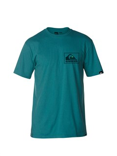 BQJ0A Frames Slim Fit T-Shirt by Quiksilver - FRT1