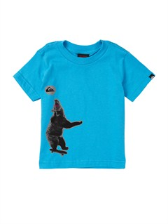 BMJ0Baby On Point Polo Shirt by Quiksilver - FRT1