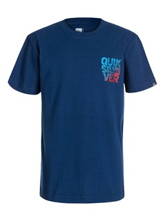 BSW0Boys 8- 6 True Test T-Shirt by Quiksilver - FRT1