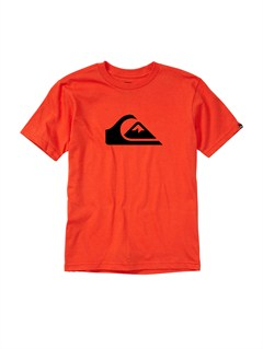 RQF0Boys 8- 6 For The Bird T-Shirt by Quiksilver - FRT1