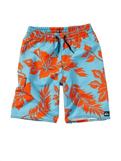 BHR6Boys 2-7 A Little Tude Boardshorts by Quiksilver - FRT1