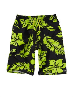 KVJ6Boys 2-7 Deluxe Walk Shorts by Quiksilver - FRT1