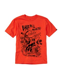 RQF0Boys 2-7 Gravy All Over T-Shirt by Quiksilver - FRT1