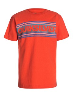 NNK0Boys 8- 6 For The Bird T-Shirt by Quiksilver - FRT1
