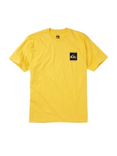 YGG0Mountain Wave T-Shirt by Quiksilver - FRT1