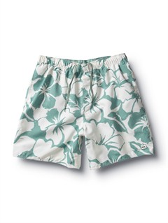 "LTGButt Logo  7"" Volley Boardshorts by Quiksilver - FRT1"