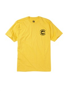YGG0A Frames Slim Fit T-Shirt by Quiksilver - FRT1