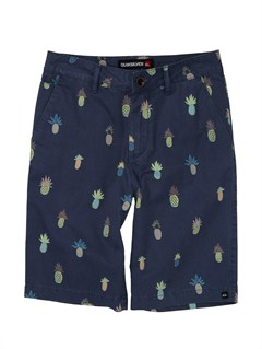 BRQ6Boys 8- 6 Avalon Shorts by Quiksilver - FRT1