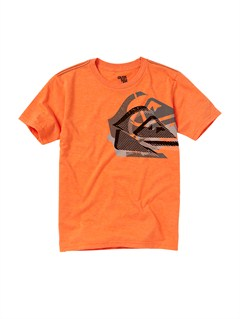 ORHBOys 8- 6 Rad Dip T-Shirt by Quiksilver - FRT1