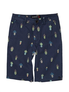 BRQ6Boys 2-7 Detroit Shorts by Quiksilver - FRT1