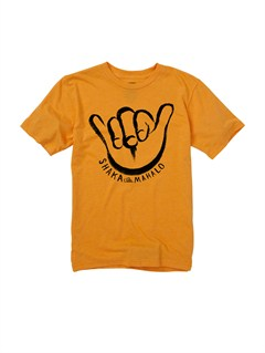 NKBHBoys 2-7 Crash Course T-Shirt by Quiksilver - FRT1