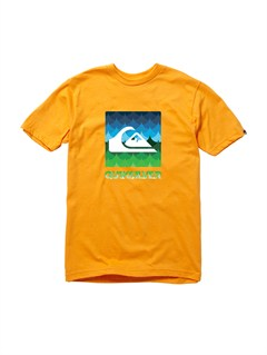 NKB0Boys 8- 6 Mountain And Wave Shirt by Quiksilver - FRT1